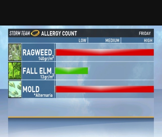 Typical Austin Allergy Report
