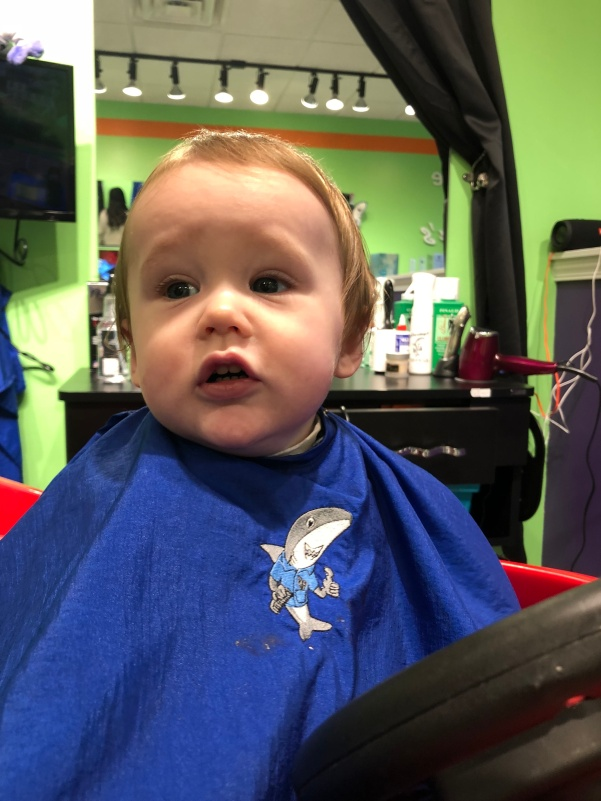 Knox Haircut 3